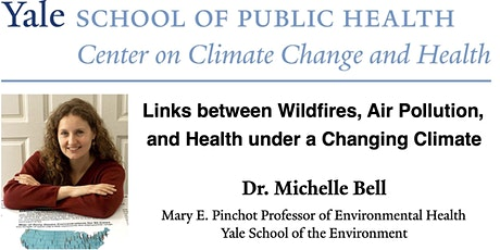 Links between Wildfires, Air Pollution, and Health under a Changing Climate tickets