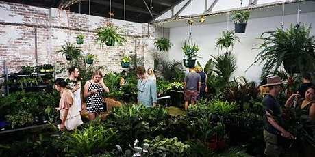 Sydney - Huge Indoor Plant Warehouse Sale - Plants + Pups Sale! tickets