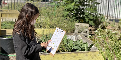 Garden Design Principles for Supporting Student Learning (Virtual Workshop) tickets