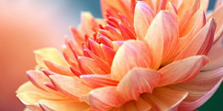 "Women's Event: ""Inner Blossoming"" - Art Therapy, Meditation and Dance tickets"
