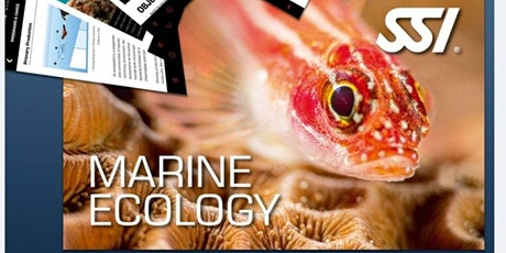 SSI MARINE ECOLOGY SPECIALTY COURSE  Batch 8 tickets