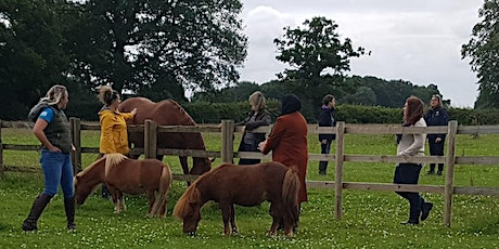 Adults Well Being with Horses Workshop tickets
