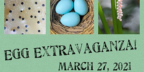 Egg Extravaganza! tickets