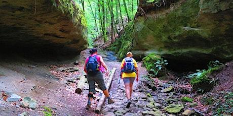 10.04 (Sa/So) Single-Tour Naturpark Schwäbisch-Fränkischer Wald für 40+ Tickets
