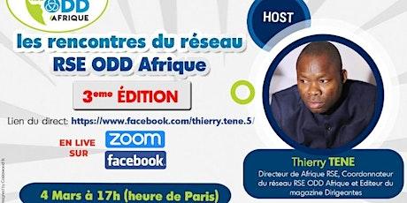 Webinaire du réseau RSE ODD Afrique : ODD 13 et RSE entreprises d'énergies tickets