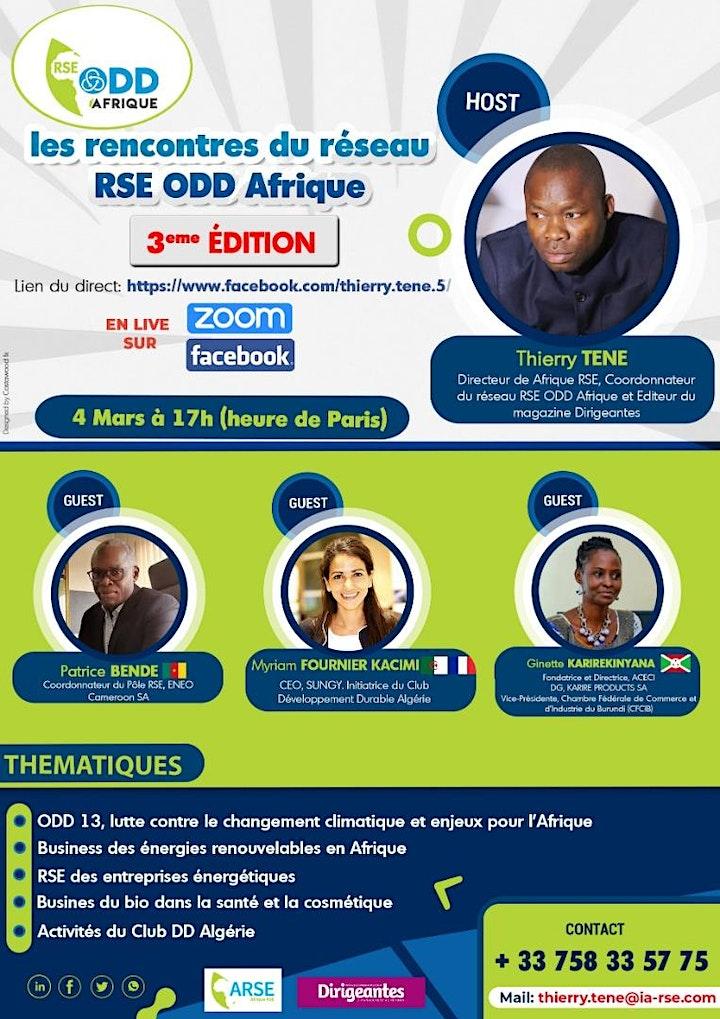 Image pour Webinaire du réseau RSE ODD Afrique : ODD 13 et RSE entreprises d'énergies
