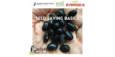 Resilience Festival: Seed Saving Basics tickets