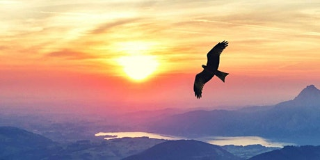 Reviving a Higher Consciousness - One week Sanjeevani Retreat online biglietti