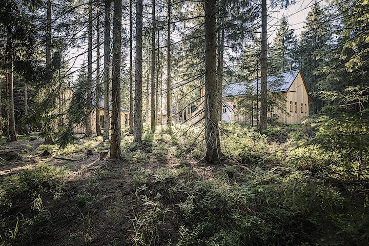 Analog Experience Nature Foto Camp: Bild