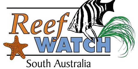 4 March - Intertidal Monitoring & Training - Reef Watch SA tickets