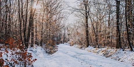 Social Hiking in Winter Wonderland at Blue Hills tickets