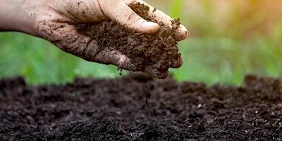 Love your soil!