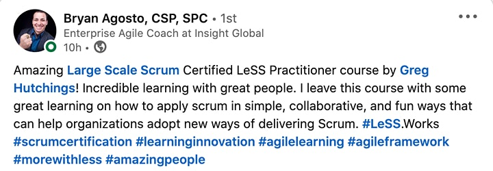 Large Scale Agile for Leaders with LeSS image