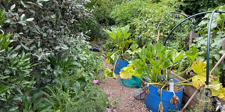 Julie and David's 'Home Harvest Time' Garden Tour tickets