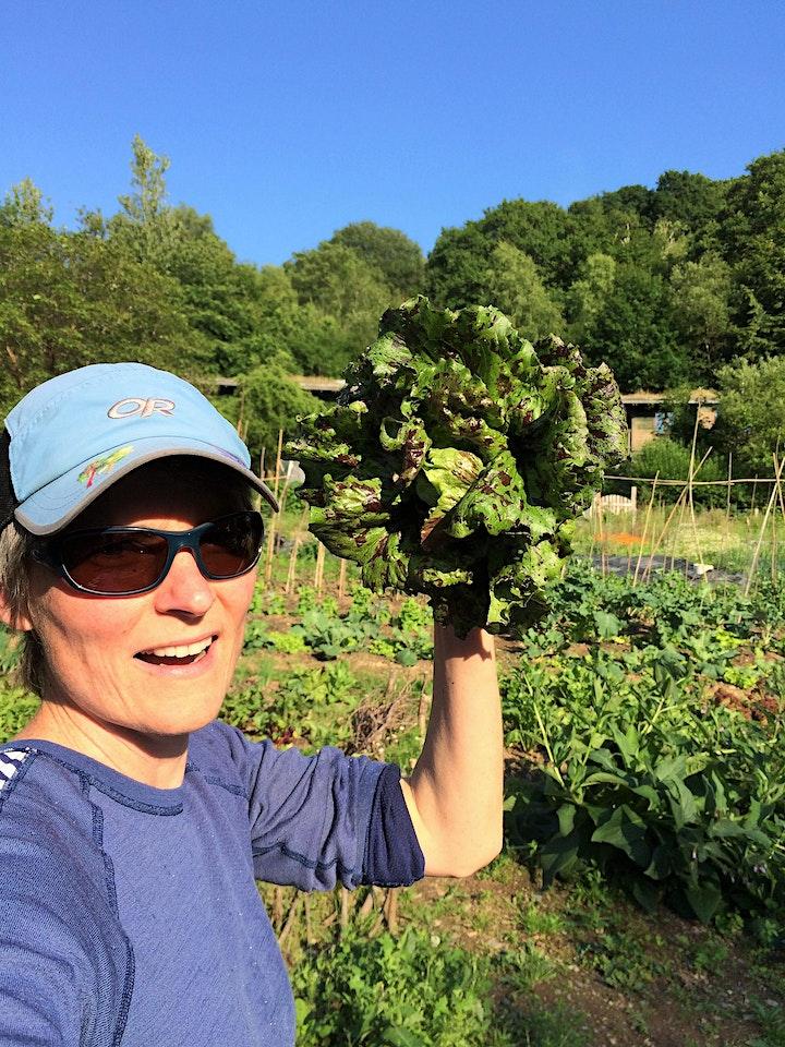 Llwybrau at Ffermio / Pathways to Farming: local food stories image