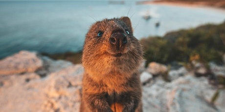 Perth Emergency PD: Rottnest Island tickets