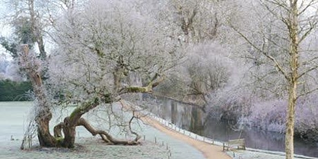 Timed entry to Mottisfont (22 Feb - 28 Feb) tickets