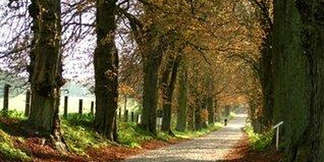 Draw and Paint a Country Lane in Perspective Using Watercolours tickets