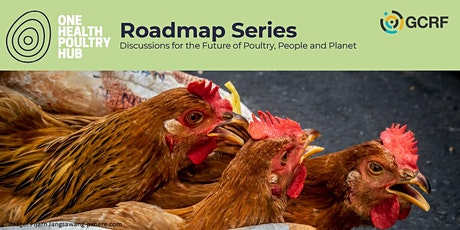 Food systems: prioritising people or poultry? tickets