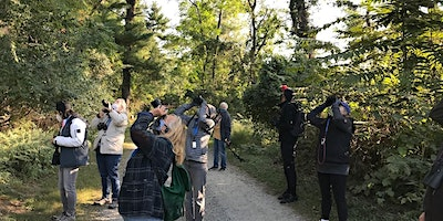 Small Group Birding: Sat Apr 24, 8:00 am Croton Point Park