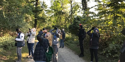 Small Group Birding: Mon Apr 19, 8:00 am, Muscoot Farm