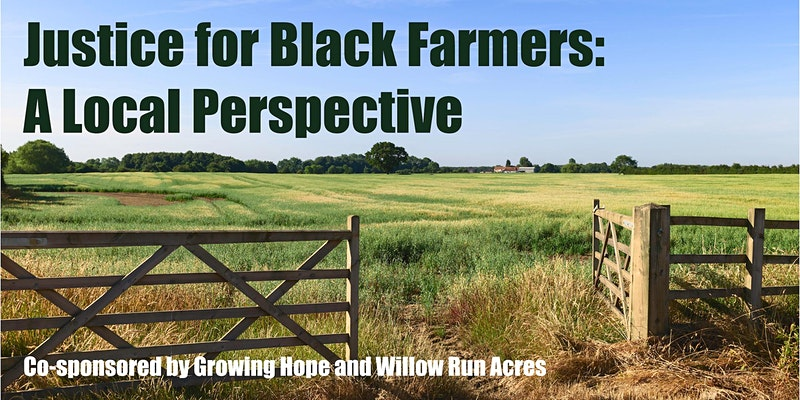Justice for Black Farmers: a Local Perspective