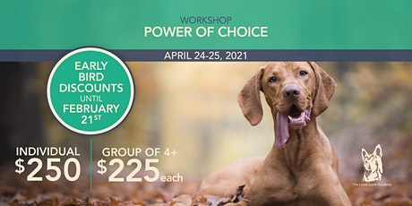 The Power of Choice: How It Can Decrease Stress in Dogs tickets