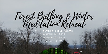 Forest Bathing & Winter Meditation Retreat billets