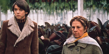 Classic Film Matinee: Harold and Maude tickets
