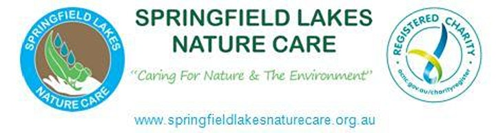 Clean Up Springfield Lakes & Spring Mountain image