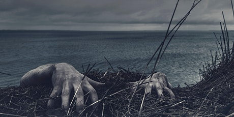 Global Horror: 21st century fears in global cinema biglietti