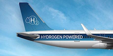 UKMF: Zero Carbon Flight tickets