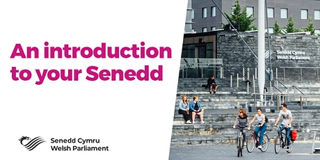 An Introduction to your Senedd tickets