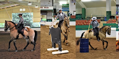 Working Equitation Obstacle Phase clinic Warwick tickets