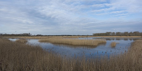 The history of RSPB Lakenheath Fen tickets