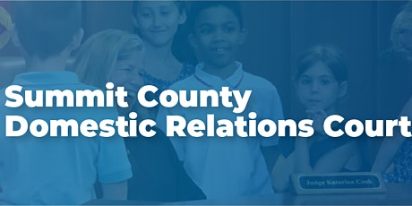 Summit County Domestic Relations Court Guardian ad Litem Webinar tickets