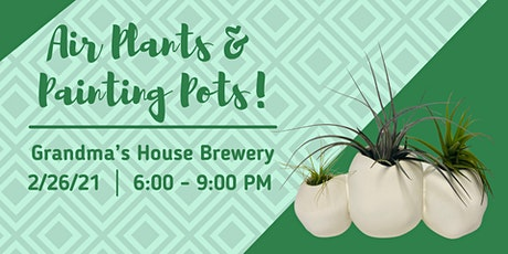 Air Plants & Painting Pots at Grandma's House Brewery tickets
