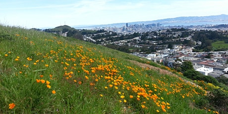 Children's Gardens with San Francisco Native Plants with Susan Karasoff tickets