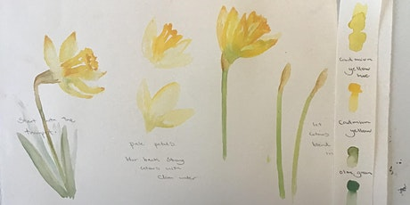 Learn to paint with watercolours. painting and poetry Online Workshop tickets