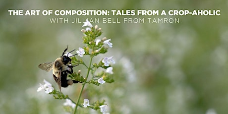 The Art of Composition: Tales from a Crop-aholic with Jillian Bell (Online) tickets