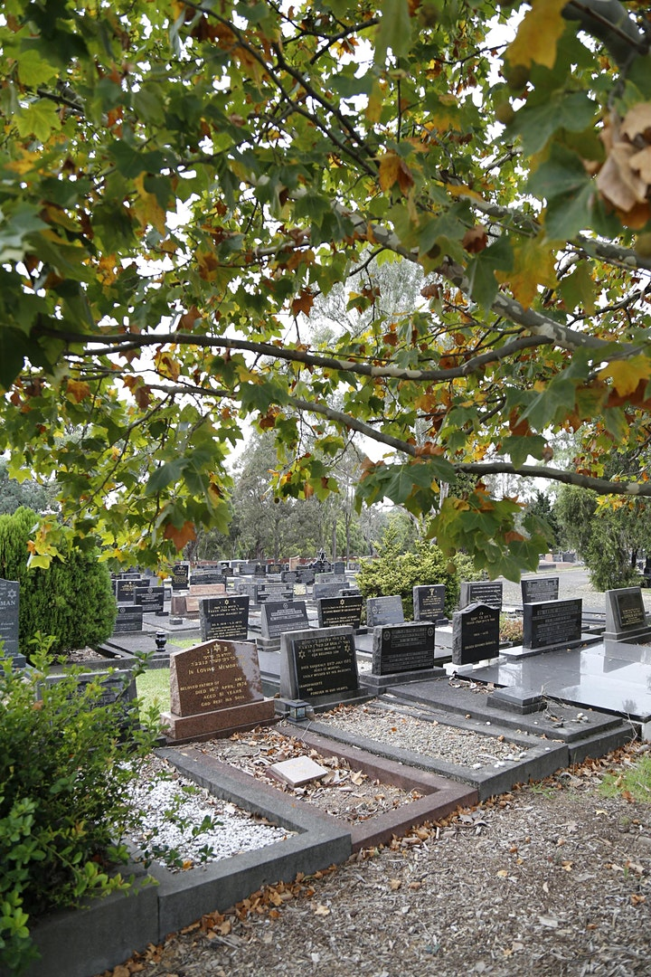 Jewish Open Day at Rookwood Cemetery image