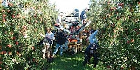 2021 Autumn Future Orchards® Walk - Stanthorpe tickets