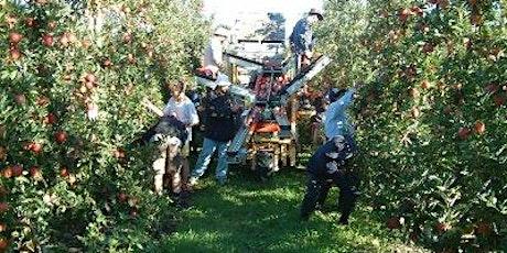 2021 Autumn Future Orchards® Walk - SA tickets