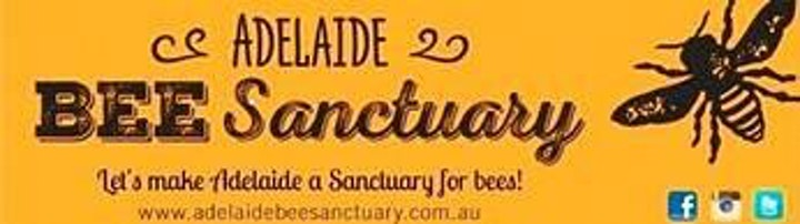 Beekeeping For Beginners. image