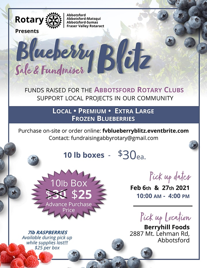 Blueberry Blitz image