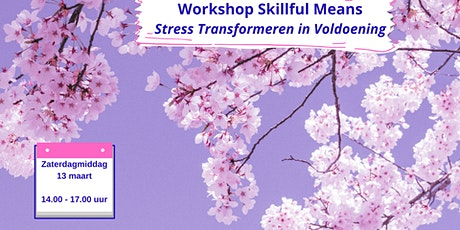 Workshop Skillful Means tickets
