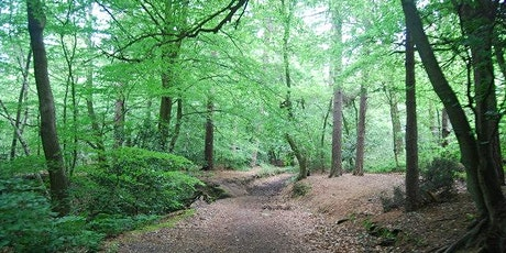 Woodland Walk with Meditation tickets