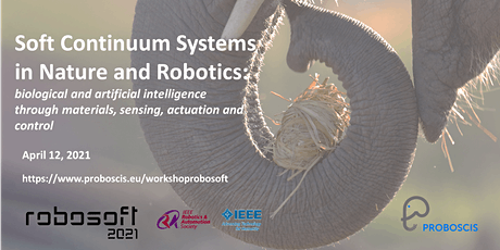 Soft Continuum Systems in Nature and Robotics - Workshop IEEE RoboSoft 2021 tickets