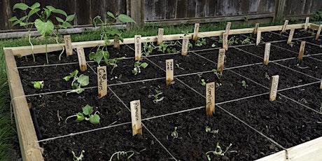 Companion Planting with Fleet Farming (Webinar) tickets