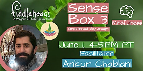 Fiddleheads Pip-Pop Virtual Series: Sense Box 4 (Mindfulness) with Ankur tickets